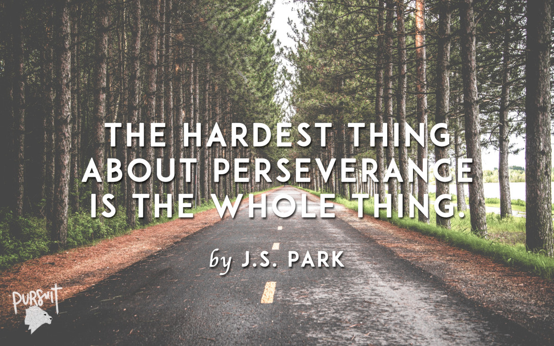 The Hardest Thing About Perseverance Is the Whole Thing